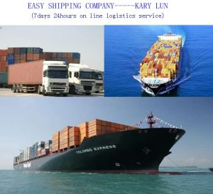 Consolidate One-Stop and Professional Shipping Services in China