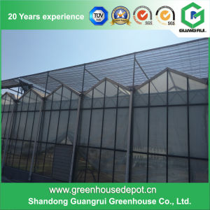 Hot Sale Commercial Agricultural Glass Greenhouse with Irrigation System pictures & photos