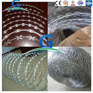 Razor Barbed Wire Galvanized Concertina Razor Wire pictures & photos