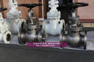 Bolted Bonnet Globe Valves ASTM A351 CF8 pictures & photos