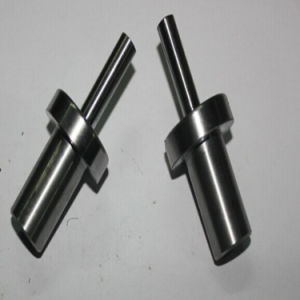 CNC Machining Shaft with Competitive Price (P161)