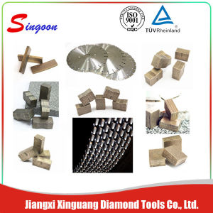 High Quality Diamond Segment Manufacturer pictures & photos