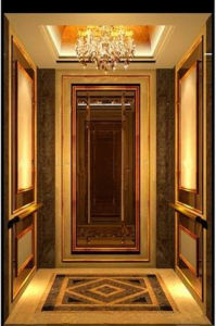 Safe Dsk Passenger Elevator with Economic Price and Best Quality pictures & photos