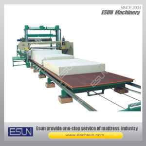 Horizontal Moving Table Foam Cutting Machine EPQ(PB) pictures & photos