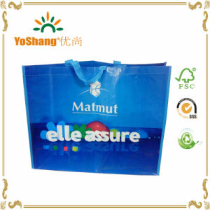 PP Woven Bags Coloured Eco Tote Bags Shopping Bags pictures & photos