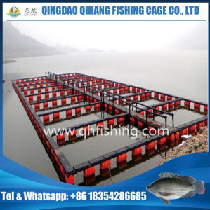 Aquaculture Net Cage for Catfish Breeding pictures & photos