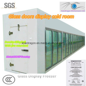 Glass Doors Display Cold Storage pictures & photos