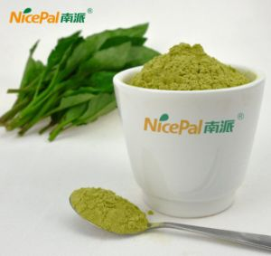 Spry Drying Hainan Calcium Rich Vegetable Powder From China Factory pictures & photos