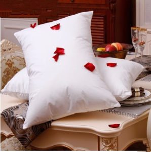 Good Dream High Quality Standard Pillow pictures & photos