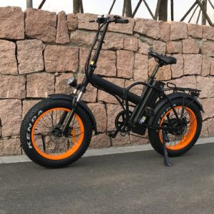 New Style Folding Ebikes with High Quality