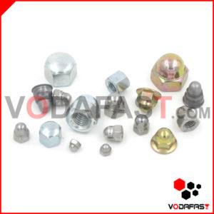 All Type Cap Nuts (Steel, Stainless Steel, Brass) pictures & photos