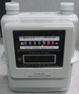 Smart Meter for Residential Use (CG-FL-2.5)