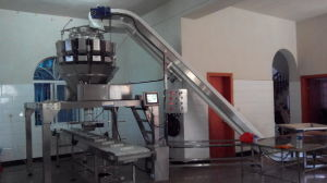 Automatic Weighing and Filling Products in Tray System pictures & photos