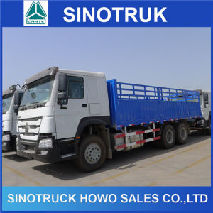 Heavy Duty 10 Wheels HOWO 6X4 Cargo Truck for Sale pictures & photos