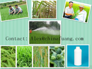 Agricultural Biotic Hormone Plant Growth Regulator 21293-29-8 S-ABA pictures & photos
