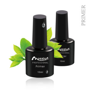 Gel & Acrylic Nails 10ml Primer for Professional Use Only