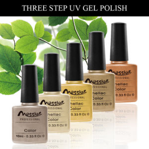 Long Lasting UV/LED Soak off UV Gel Polish 10ml Nail Beauty