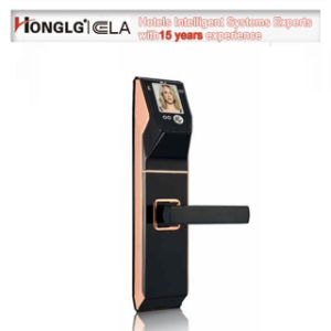 Ela Biometric Face Recognition Door Lock for Residential Commercial Use