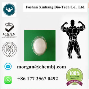 4-Aminobutyl Guanidinium Sulphate Purity Agmatine Sulfate as Nutritional Supplements for Natural Health Care