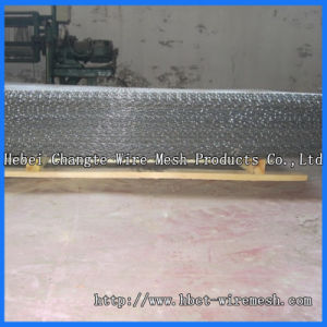 Double Crimped Wire Mesh of Stainless Steel Wire, Steel Wire pictures & photos