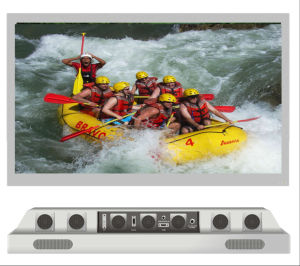 55 Inch LED Sunbrite Weatherproof TV pictures & photos