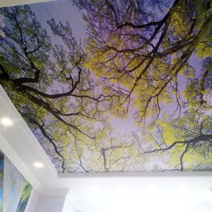 Forest Canopy Drop Ceiling Fluorescent Decorative Ceiling Cover Skylight Film pictures & photos