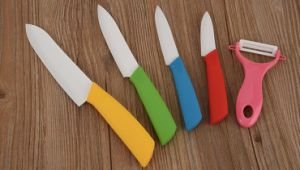 6PCS Colorful Stainless Steel kitchen Knife Set with Acrylic Base
