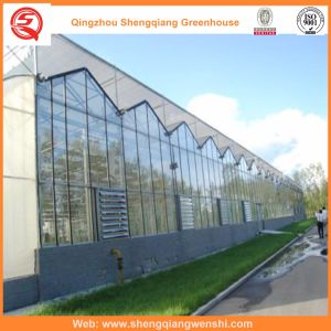 Agriculture Multi Span Polycarbonate Sheet Greenhouse for Vegetables pictures & photos