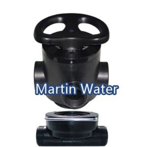 Manual Multi-port Valve Filter pictures & photos