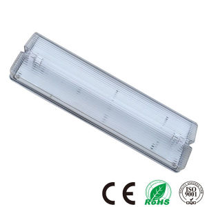 China Ceiling Surface Mounted Fluorescent Emergency Light Fixtures ...