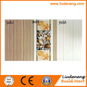 250X400mm Hot Sale Ceramic Tiles for Interior Wall