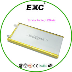 Exc7562151 Lithium Battery Polymer Battery 8000mAh for Tablet pictures & photos