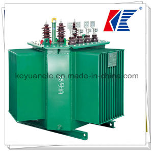 S13 Oil Type Transformer 10~4000kVA 11/33kv with Temperature Control