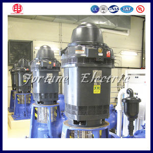Totally Enclosed 25HP Three Phase Induction Motor China pictures & photos