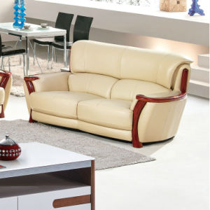 Wooden Sofa, Leather Sofa, Combination Sofa, China Sofa (A59) pictures & photos