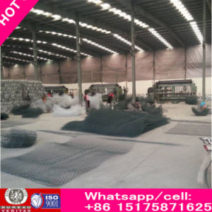 86-15175871625 Best Price Gabion Box Gabion Basket Gabion Mesh pictures & photos