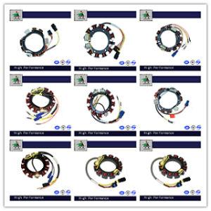 China Jetunit 100%Premium Motor Parts Stator Assy Magneto