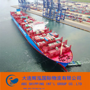 LCL Service for Sea Freight From Dalian to Japanv