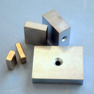 N42  Special Shaped NdFeB Permanent Magnets