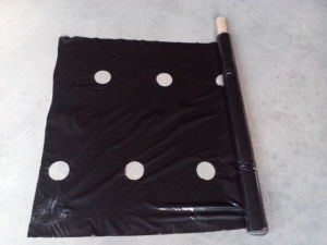 White/Black Plastic Mulch Film with Hole