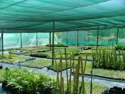 Green Shade Net for Greenhouse pictures & photos