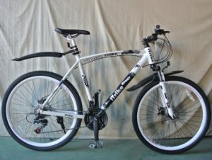 New Product Flying Pigeon Mountain Bike (FP-MTB-A006) pictures & photos