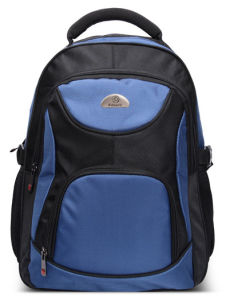 Laptop Bag Backpack Fit Your Laptop (SB6365) pictures & photos