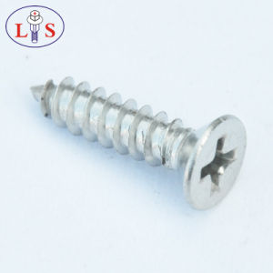 Stainless Steel Countersunk Head Bolt pictures & photos
