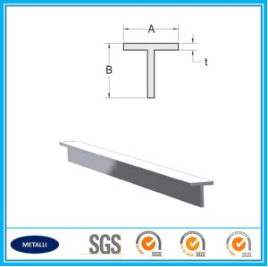 Industrial T Type Aluminum Beam pictures & photos