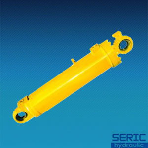 Hsg Series Hydraulic Cylinder for Industrial Application pictures & photos