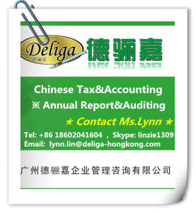 Guangzhou Company Annual Auditing / Annual Report