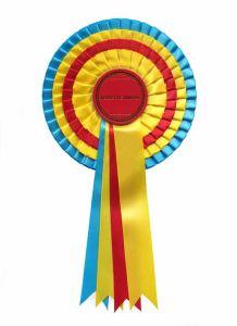 China Award Ribbon Rosette-3 - China Rosette, Ribbons