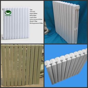 Cast Iron Radiator (IM3-712)