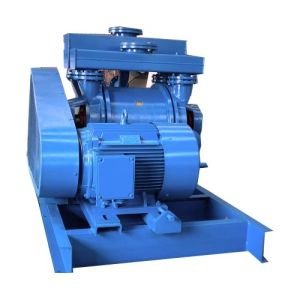 Water Ring Vacuum Pump and Compressor/ Coal Washing Vacuum Pump (2BE1) pictures & photos